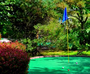Discover the Simple Care Tips for Your Artificial Turf Putting Green