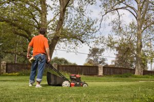 Quit Wasting Gas and Your Weekends: Get Artificial Turf and Enjoy a Nearly Maintenance-Free Yard
