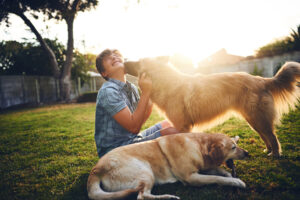 Is Your Backyard Fido-Friendly? Learn How to Make Your Backyard Better for Dogs
