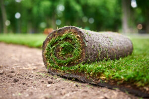You Might Be Surprised to Learn How Long the Average Artificial Grass Yard Will Last